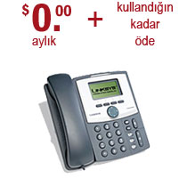 business voip pricing